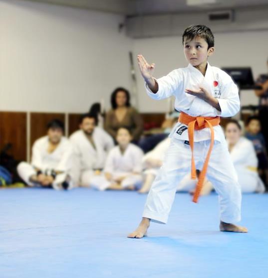 Niños en las artes marciales, beneficios para su mente y